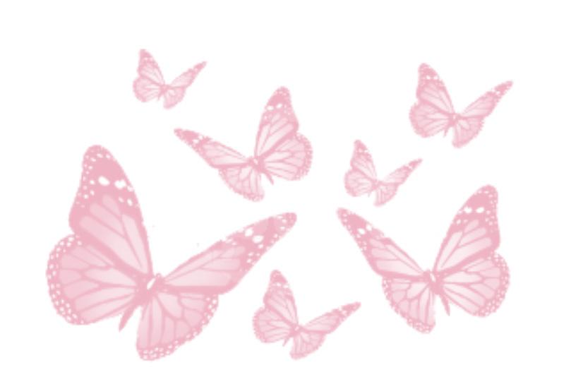mariposas2_low